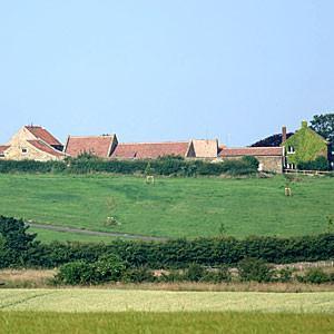 green belt - fields